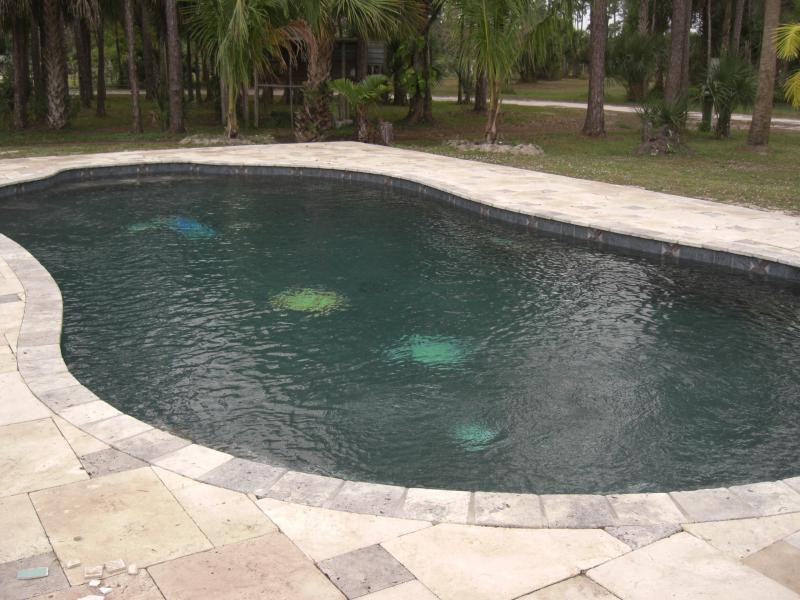 Pool Plaster Mix : E m pool plastering inc